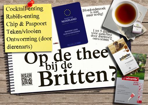 vakantiewijzer Dierenziekenhuis Eindhoven