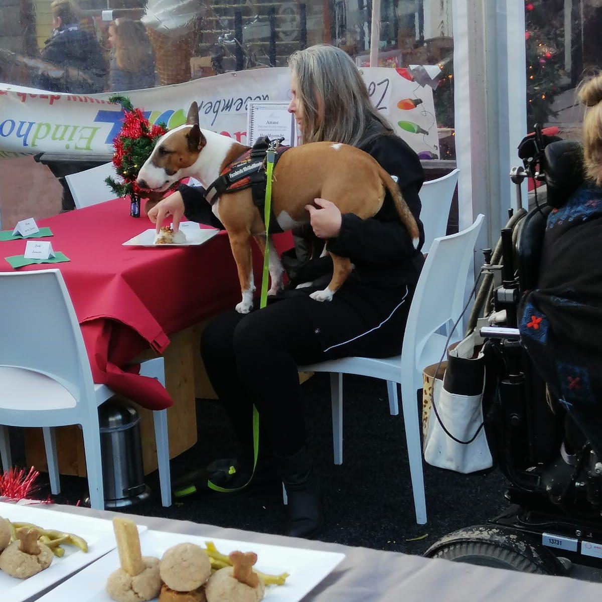 kerstdiner honden