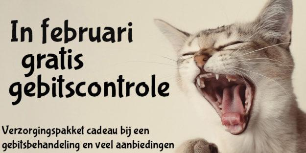 Gebitscontrole kat